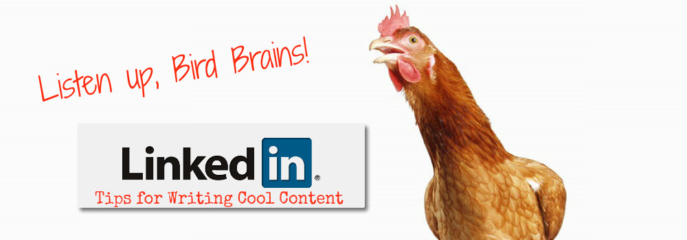 5 Tips for LinkedIn Platform Building for Bird Brains